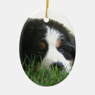 Bernese Puppy Ceramic Oval Ornament