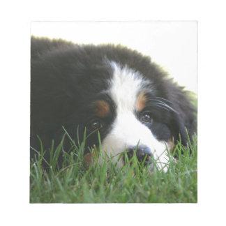 Bernese Puppy Notepad