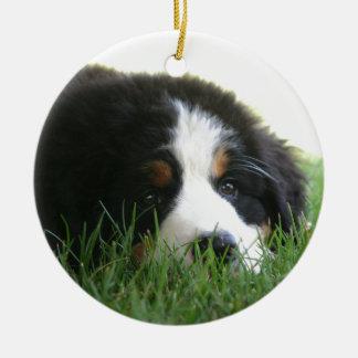 Bernese Puppy Round Ceramic Ornament