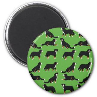 Bernese Sennenhund selection Magnet