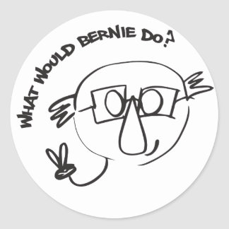 Bernie Anna Final Classic Round Sticker