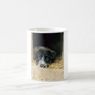 Bero at home coffee mug