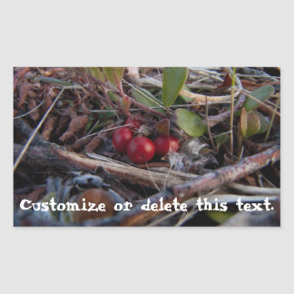 Berries and Twigs; Customizable Sticker