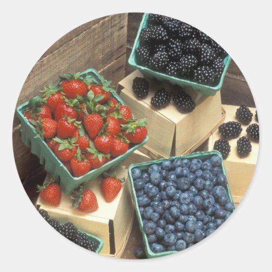 Berries Classic Round Sticker