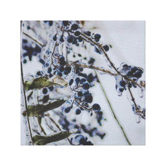 Berries in Ice Canvas Print