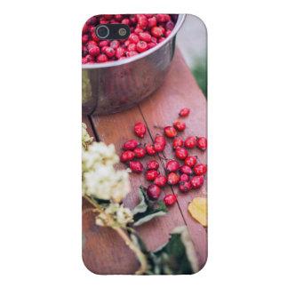 Berries iPhone 5/5S Case