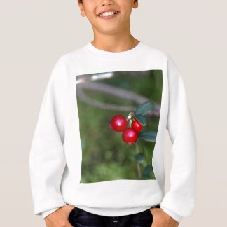 Berries of a wild lingonberry (Vaccinium vitis-ide Sweatshirt