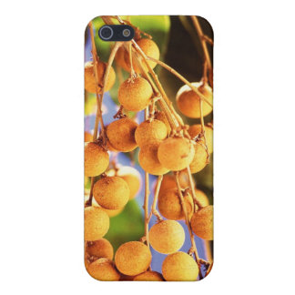 Berries orange small cases for iPhone 5