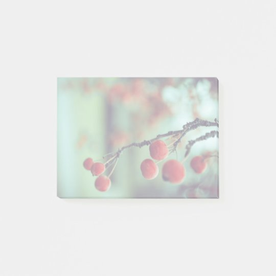 Berries Post-it Notes