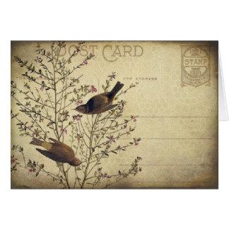 Berry Birds Card