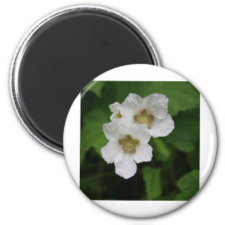 Berry Blossoms Refrigerator Magnets