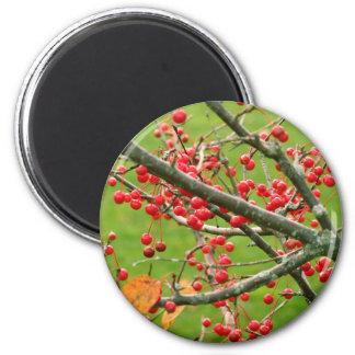 Berry Bush magnet