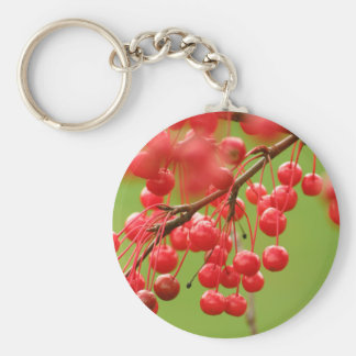 Berry Cheerful keychain