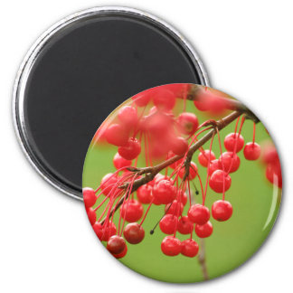 Berry Cheerful magnet