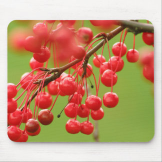 Berry Cheerful mousepad