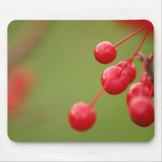 Berry Close horizontal Mouse Pad