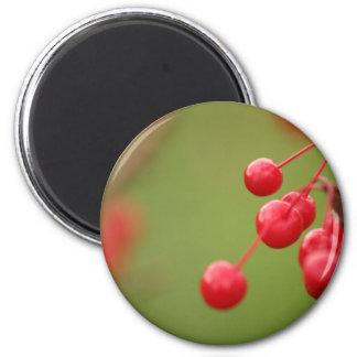 Berry Close magnet