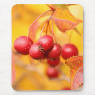 Berry Nice mousepad