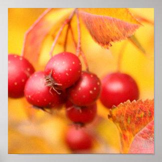 Berry Nice print
