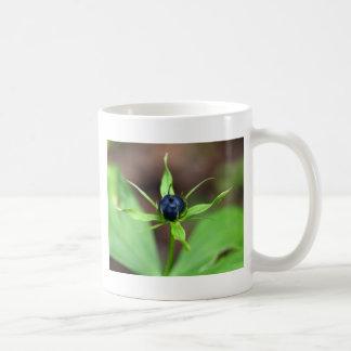 Berry of an herb paris (Paris quadrifolia) Coffee Mug