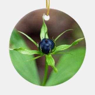 Berry of an herb paris (Paris quadrifolia) Round Ceramic Ornament
