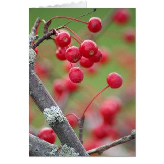 Berry Pretty card