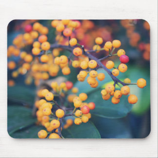 Berry tree mouse pad