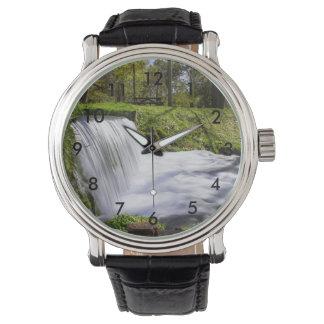 Beside Hodgson Spring Falls Watch