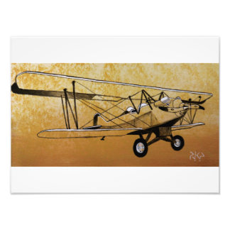 Besler Steam Biplane Photo Print