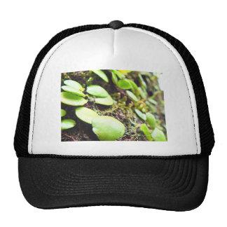 """Best brand model modern art top photographer "" Trucker Hat"