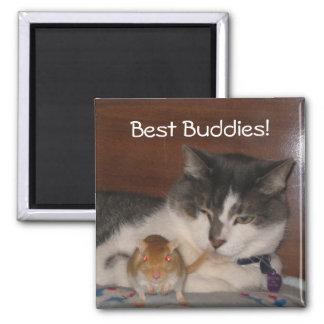"""Best Buddies 2"""" Magnet"""
