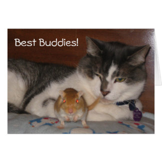 Best Buddies Friendship Card