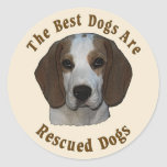 Best Dogs Are Rescued - Beagle Classic Round Sticker