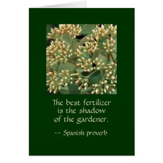 Best fertilizer shadow of the gardener. GI BB Card