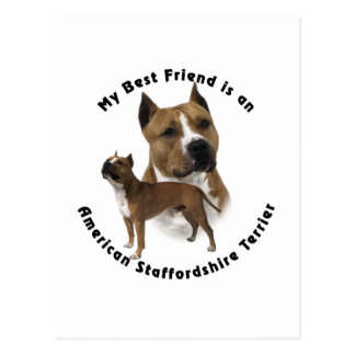 Best Friend American Staffordshire Terrier Postcard