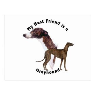 Best Friend greyhound Postcard