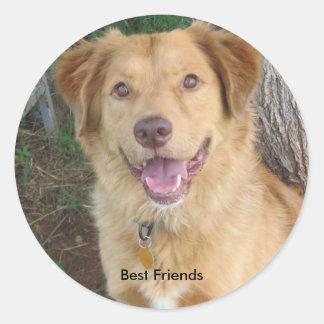Best Friends2883 Classic Round Sticker