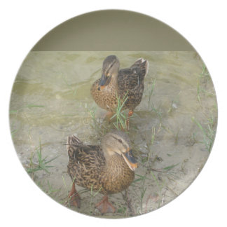 """Best Friends are Made - 10"""" Grey Duck Plate"""