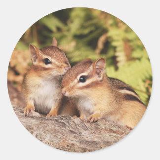 Best Friends Baby Chipmunks Round Sticker