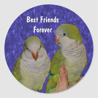 Best Friends Cute Birds Friendship Sticker