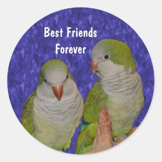Best Friends Cute Birds Friendship Sticker