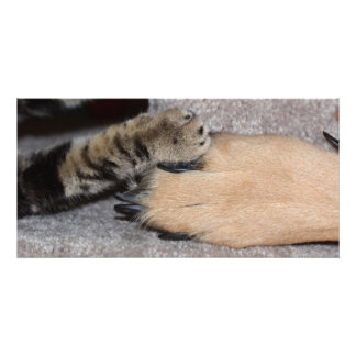 Best Friends Forever by Shirley Taylor Photo Print