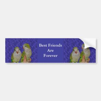 Best Friends Forever Cute Birds Bumper Sticker Car Bumper Sticker
