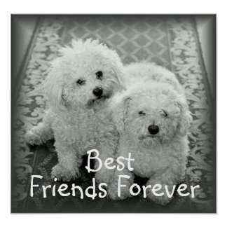 Best Friends Forever Poster Print