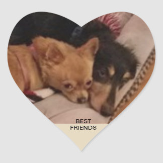 BEST FRIENDS HEART STICKER