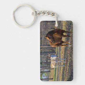 Best Friends Horse and Donkey Key Chain