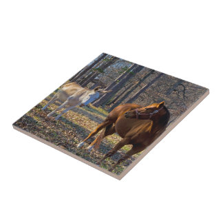 Best Friends Horse and Donkey Photo Tile