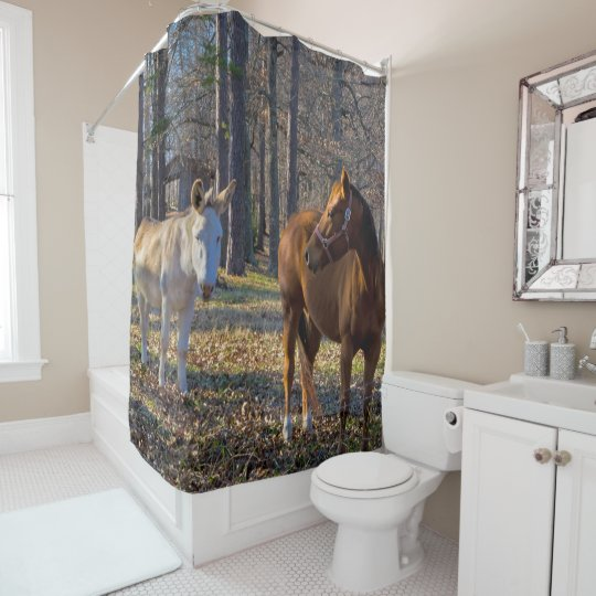 Best Friends Horse and Donkey Shower Curtain