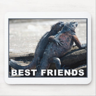 Best Friends Mouse Pad