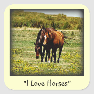 """Best Friends"" - Pair of Horses Square Sticker"